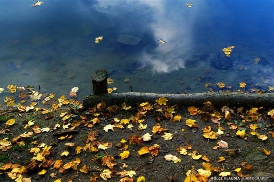 2013.10.22. ősz a tónál (22)