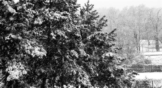 2014.02.12. hóesés (5)
